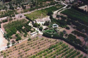 Large Country Estates Europe For Sale With Hunting Equestrian Sporting Facilities Vineyard Olive Groves